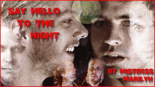 """""""Say Hello to the Night"""" banner"""